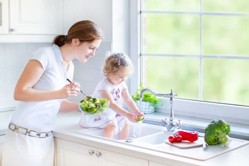 What is the best garbage disposal for home use